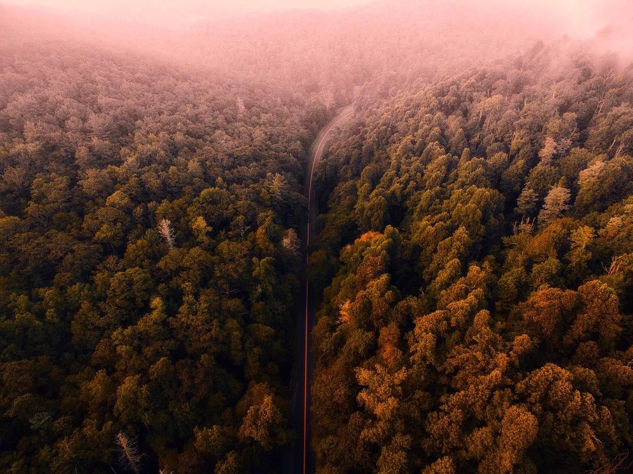 Blue Ridge Mountains_Virginia_USA_PD