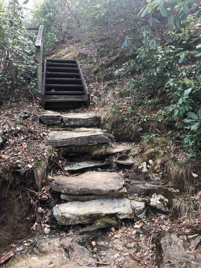 Bluff Mountain Trail_Anna Wingler_AOT