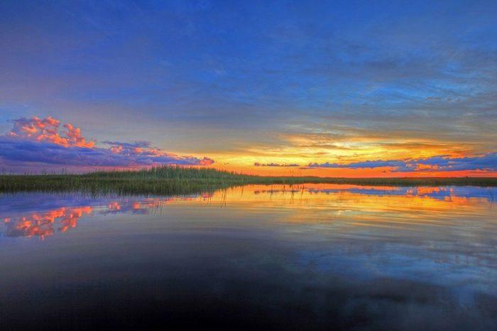 Everglades_PD