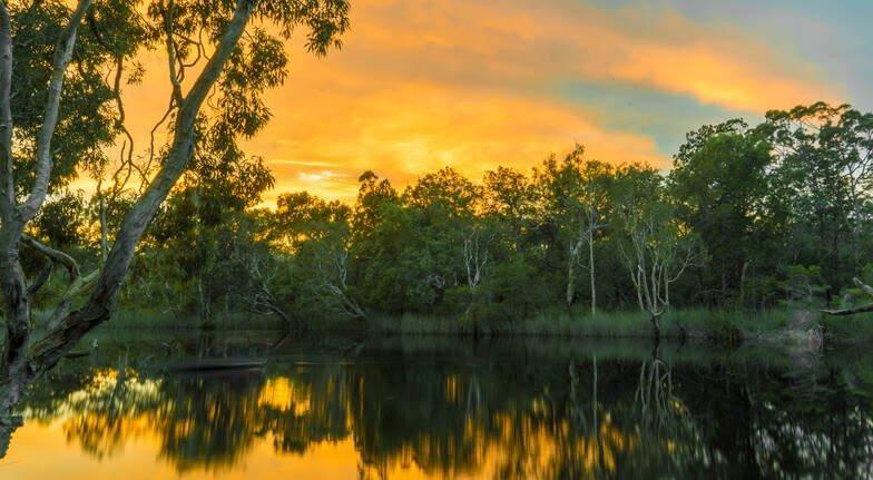 Noosa Everglades_Australia_Guest Post_AOT
