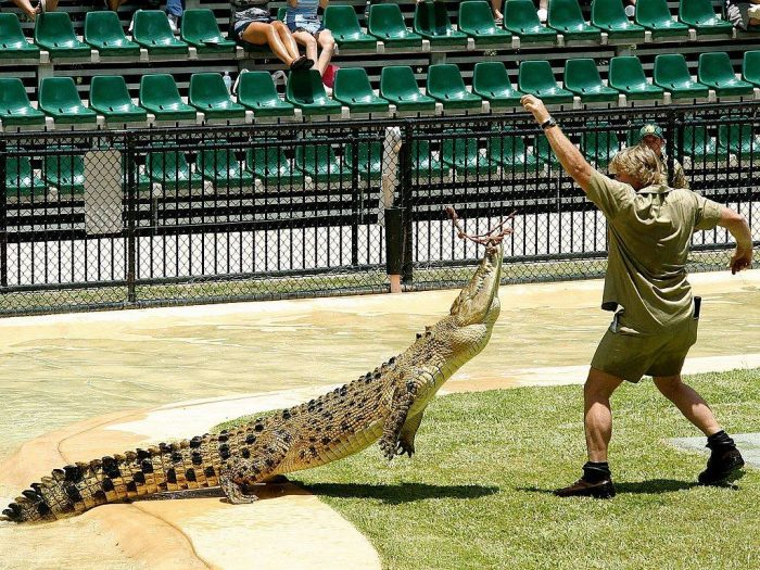 Steve_Irwin_Australia Zoo_CCSA3.0