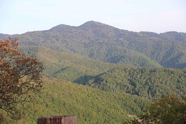 Waterrock Knob viewed from the Plott Balsams overlook_CC0