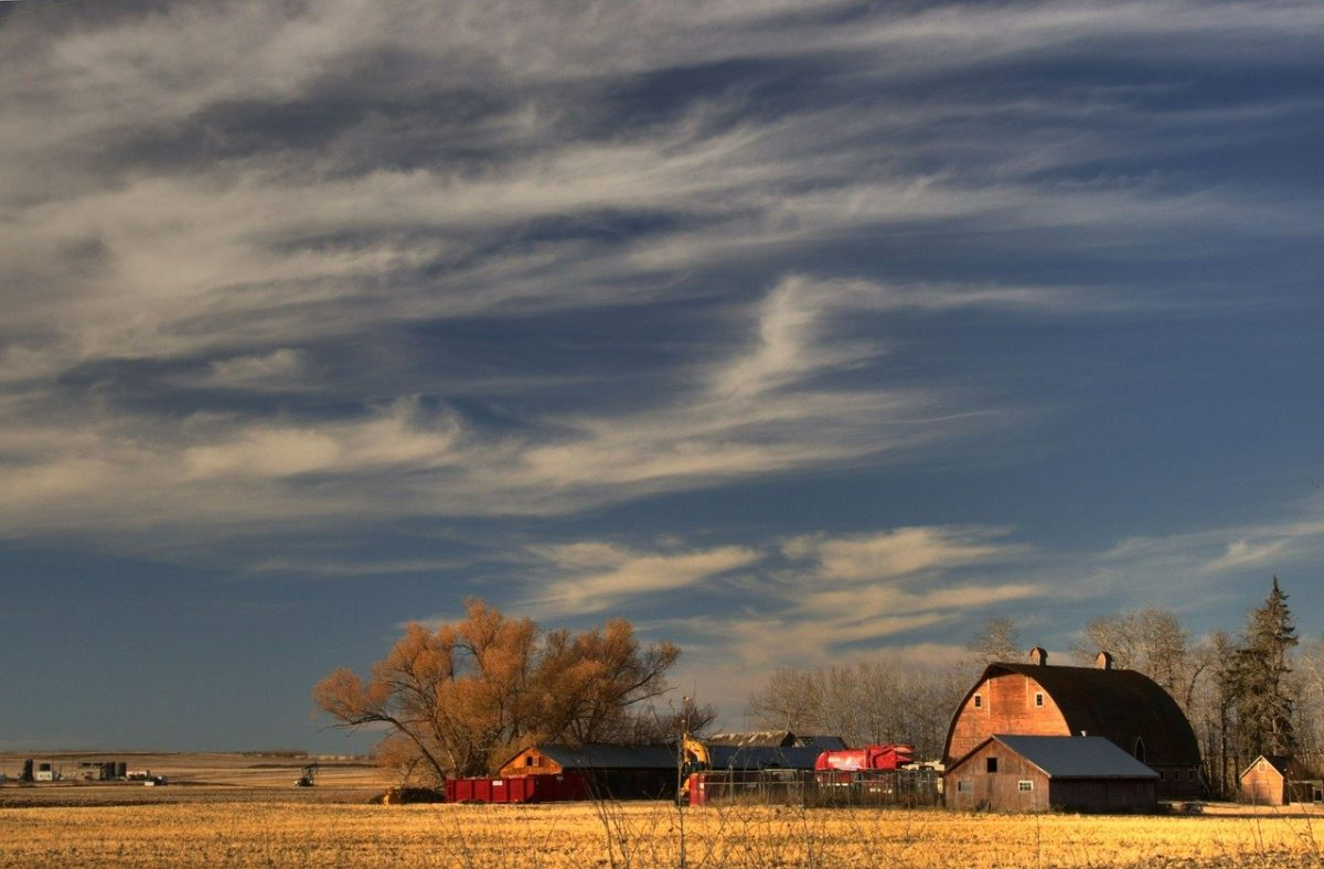 Farm Prairie_Rural Barn_PD