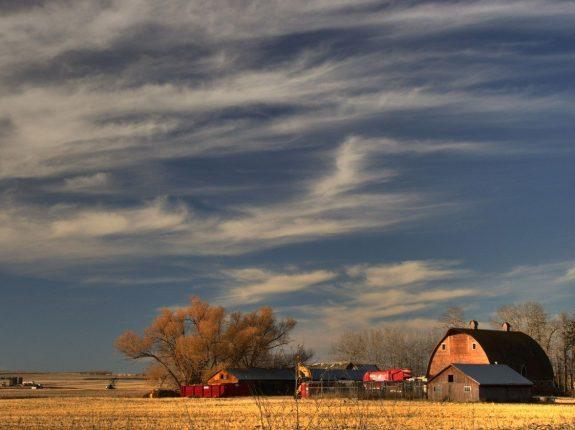 Farm Prairie_Rural Barn_PD