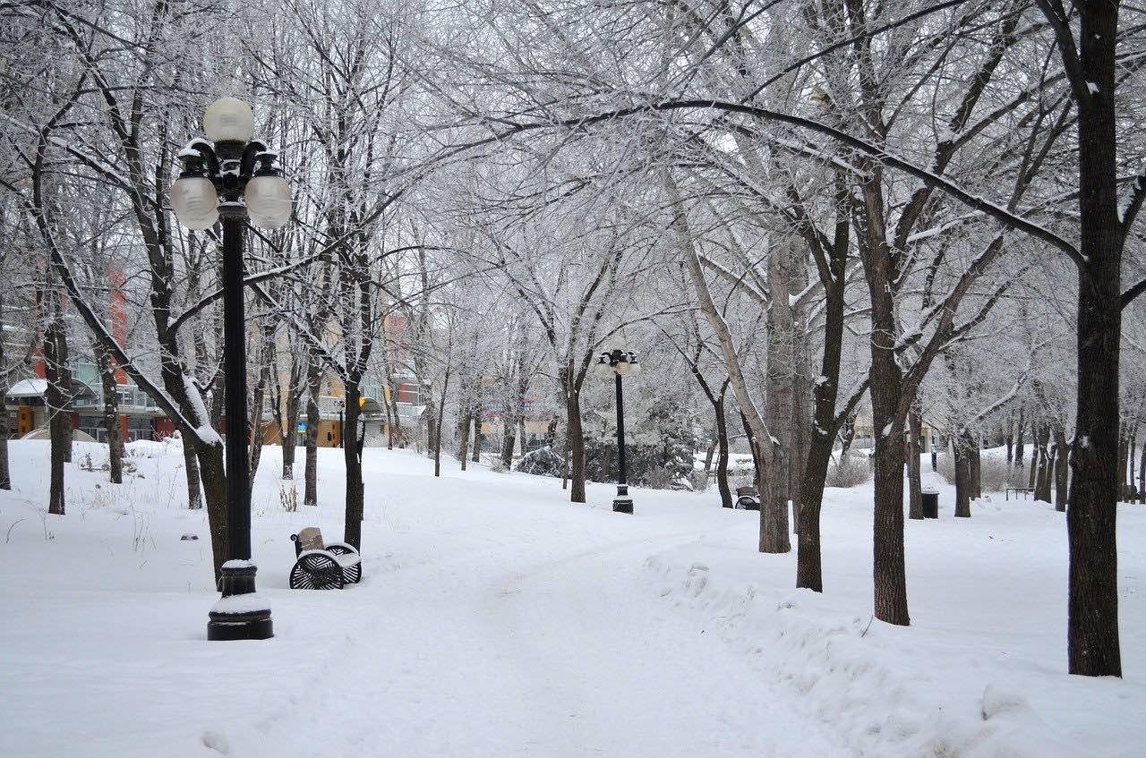Winnipeg in winter_Canada_PD