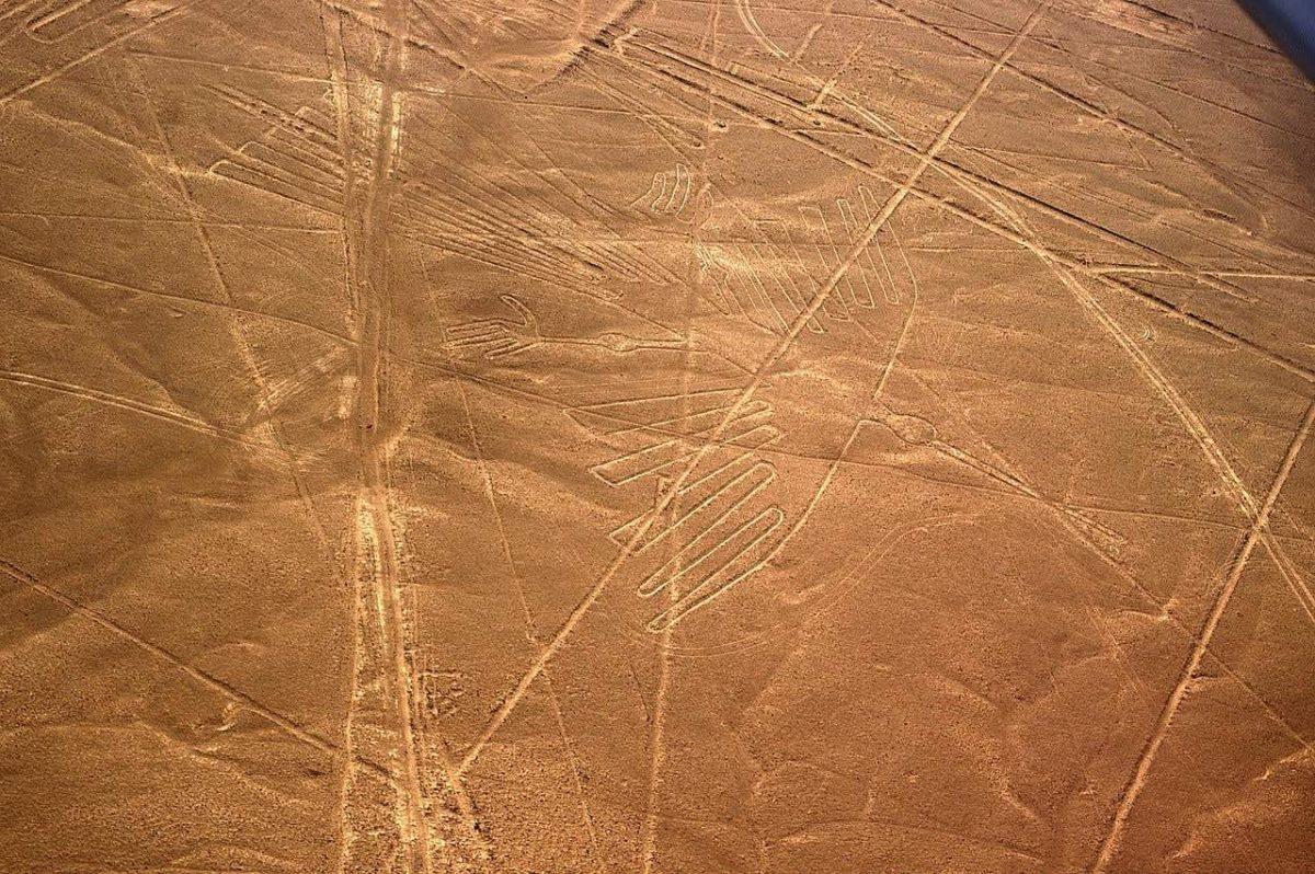 Condor bird nasca lines_Nazca Peru_PD