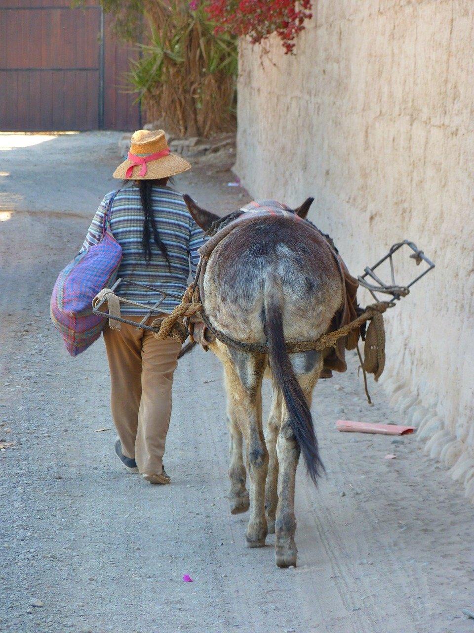 Peruvian life_Nasca_Peru_PD