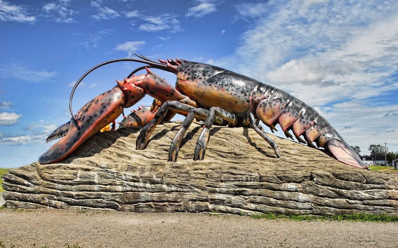Lobster in New Brunswick Canada_PD