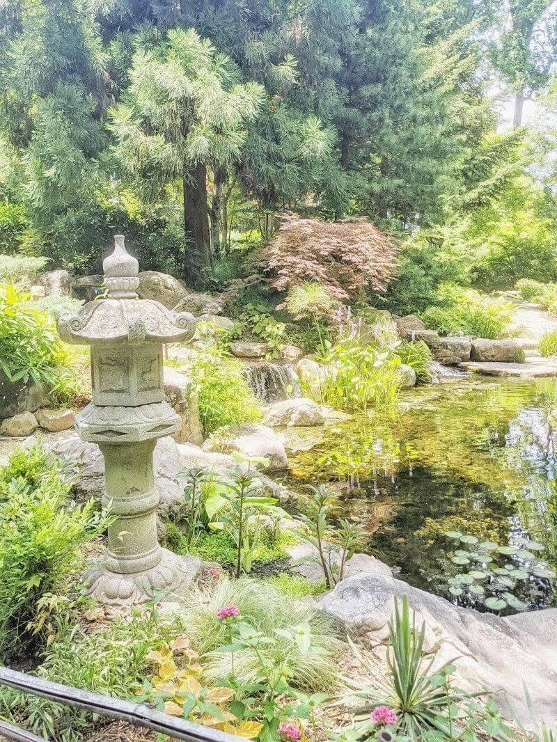 UNC Botanical Gardens_Guest_AOT