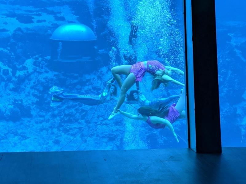 Weeki Wachee Mermaids_Guest_AOT